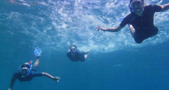 Femmes en snorkeling