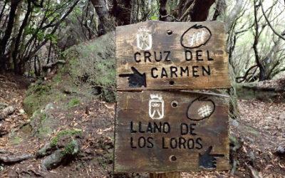 Panneau Cruz del Carmen